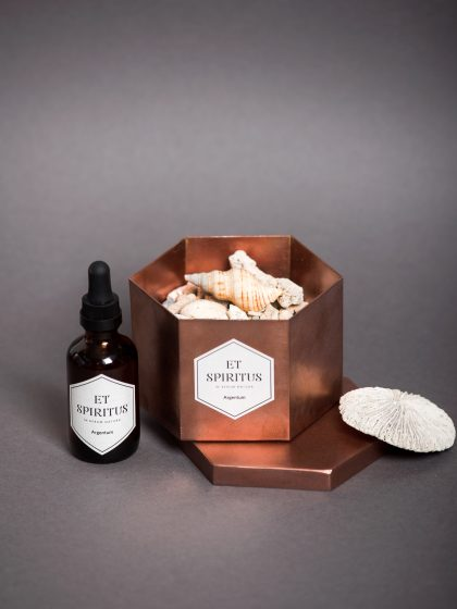Медный гексагон с кораллами аромат Argentum