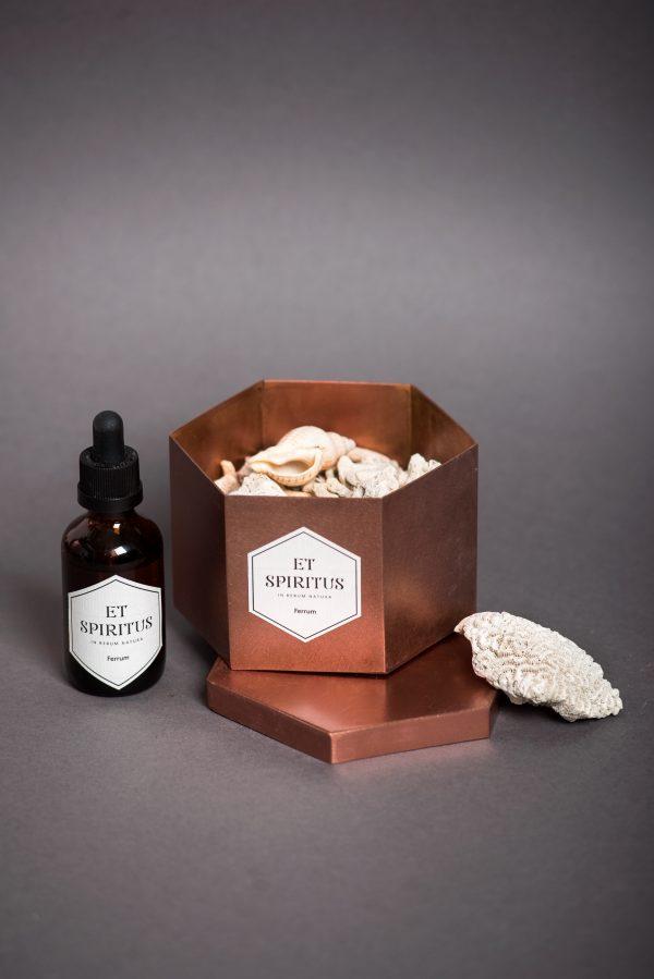 Медный гексагон с кораллами аромат FERRUM